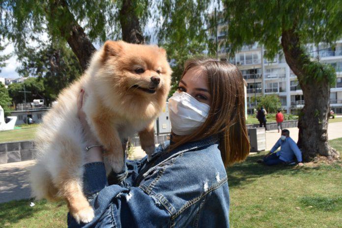 Hareketsiz Yaşam Evcil Hayvanları da Etkiledi